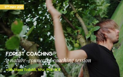 Forest coaching workshop